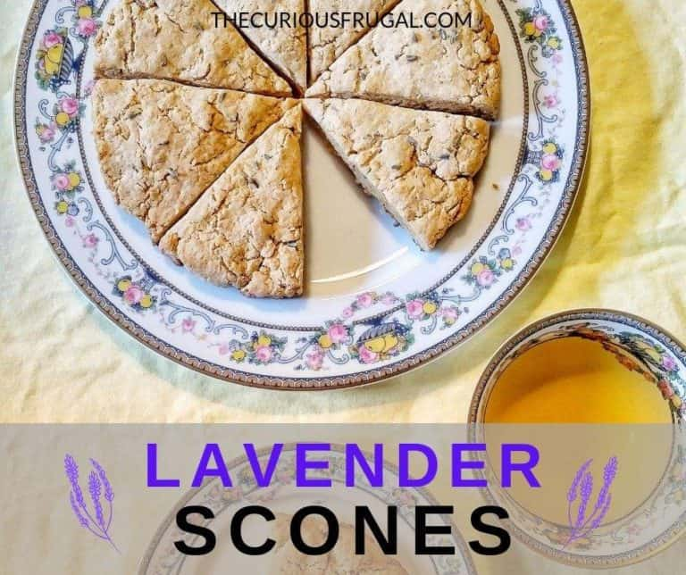 Lavender Scones – Eating Food From Our Tiny Backyard