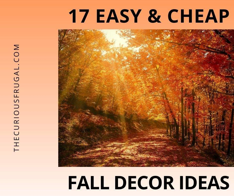 17 Easy and cheap fall decor ideas (fall outdoors scene with trees and fallen leaves)