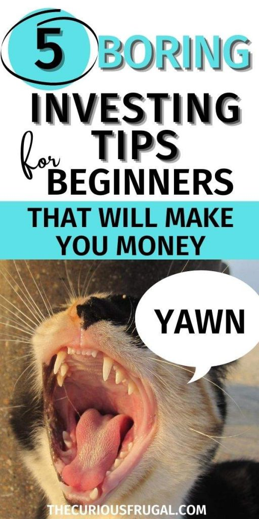 5 Boring Investing Tips For Beginners That Will Make You Money (bored kitty yawning)