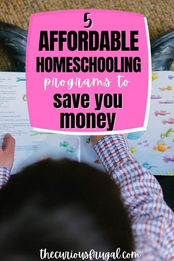 5 Affordable homeschooling programs to save you money (child reading a workbook at home)