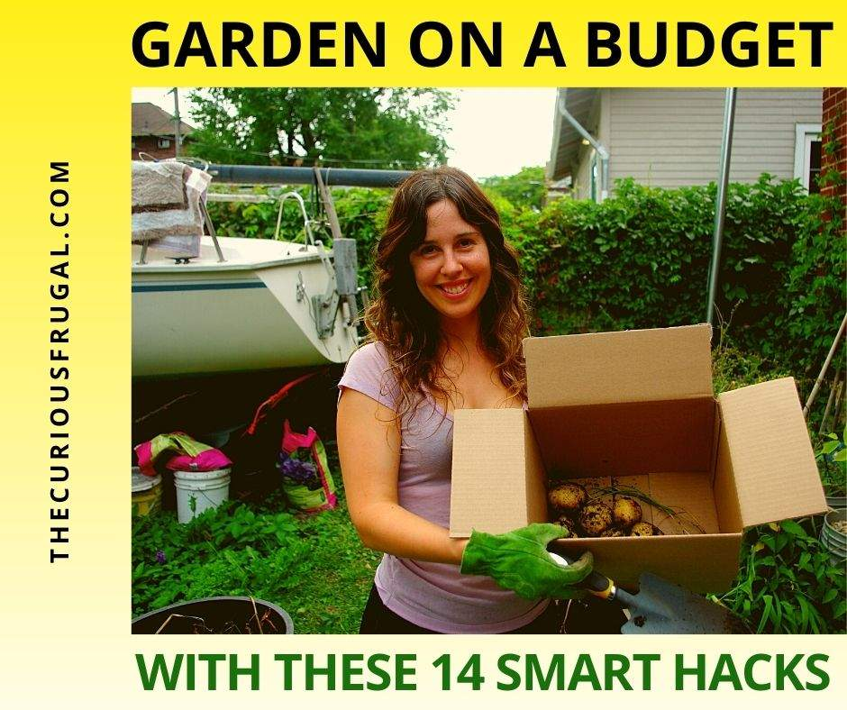 Garden on a budget with these 14 smart hacks (woman in a backyard garden holding a box of potatoes she dug up)
