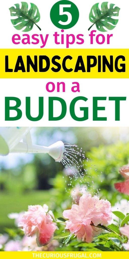 5 Easy tips for landscaping on a budget (a person watering pink flowers in a garden)