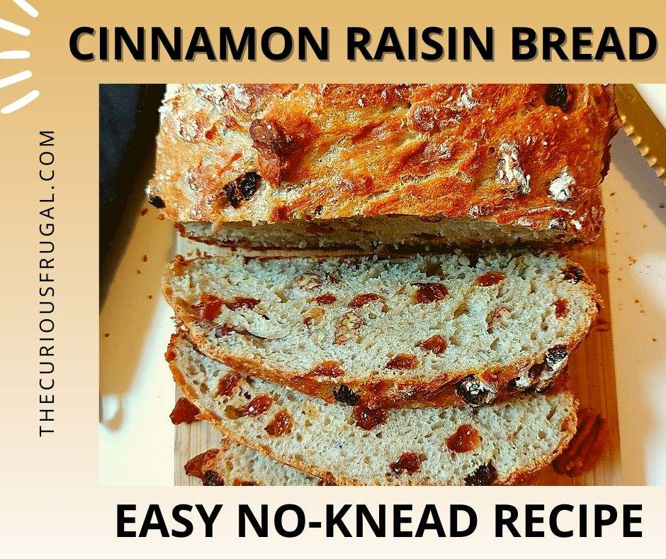 Cinnamon raisin bread: easy no-knead recipe (crusty loaf of bread with slices showing raisins and pecans)
