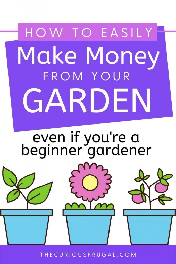 How to easily make money from your garden, even if you're a beginner gardener (assorted flowers growing in pots)