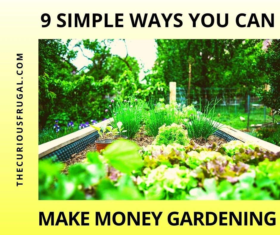 9 Simple ways you can make money gardening (beautiful backyard garden with lots of assorted plants and vegatables)