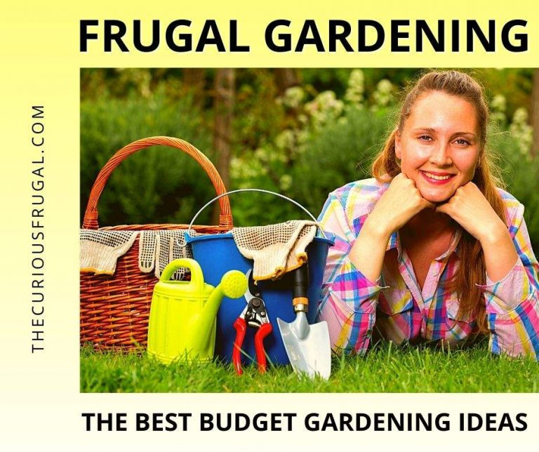 Frugal Gardening: The Best Budget Gardening Ideas for Your Outdoor Space