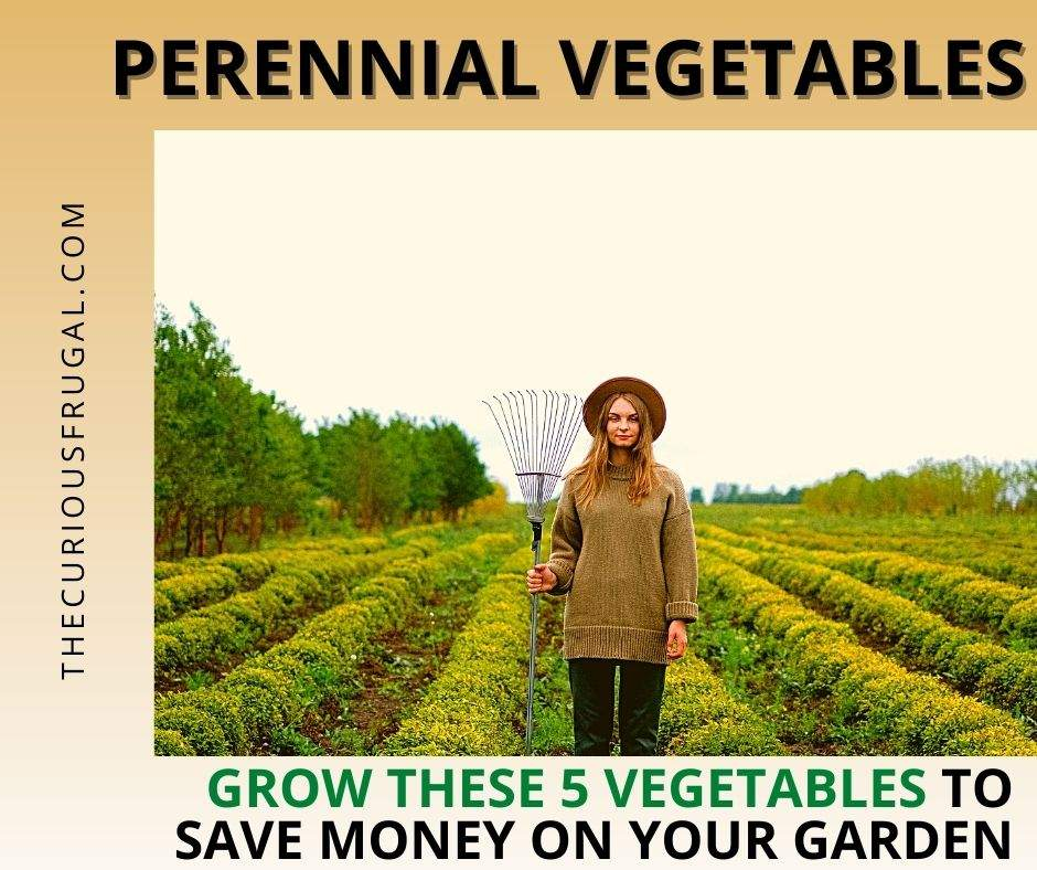 Perennial vegetables: grow these 5 vegetables to save money on your garden (women with a rake gardening)