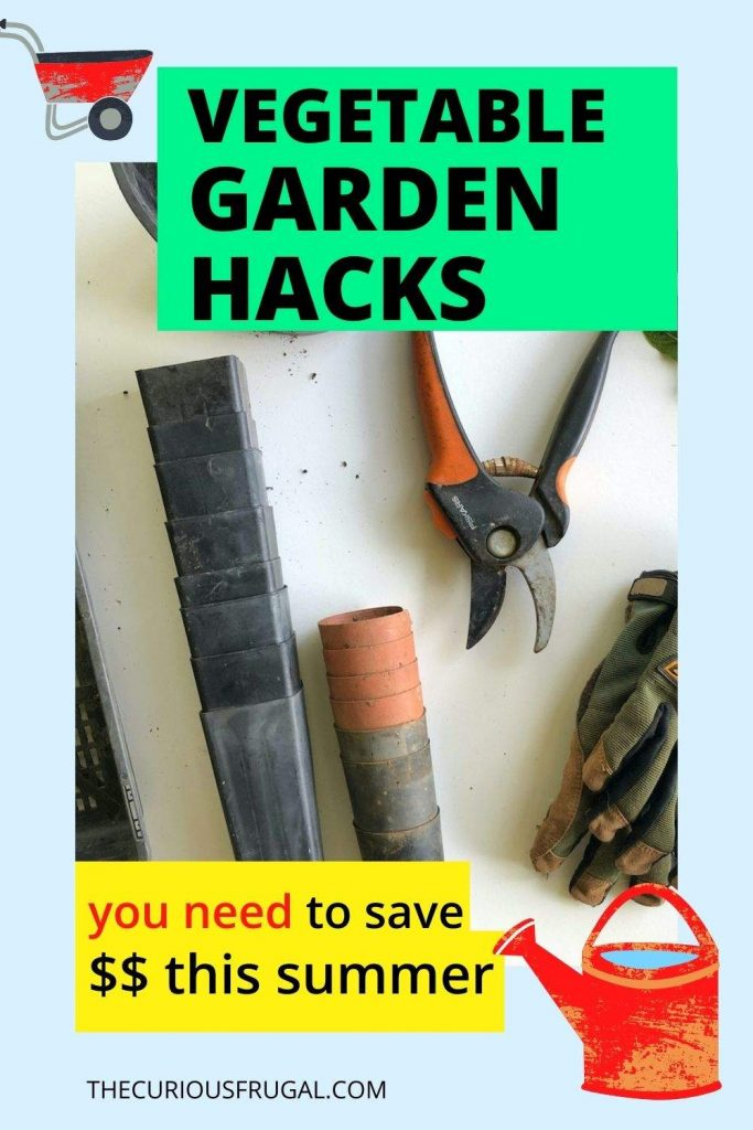 Vegetable garden hacks you need to save money this summer (gardening gloves, garden shears, flower pot on a table)